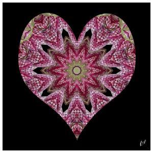 2happyhearts02.jpg